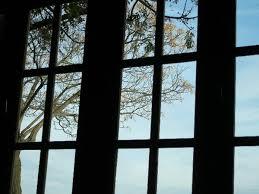ventana mente