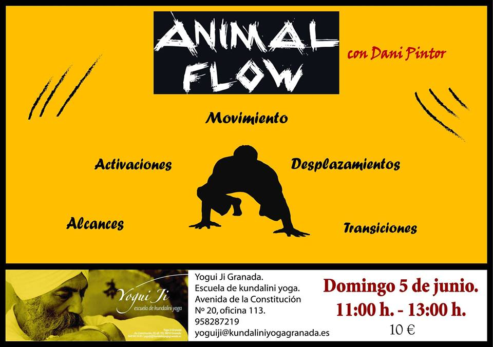 Animal Flow Granada
